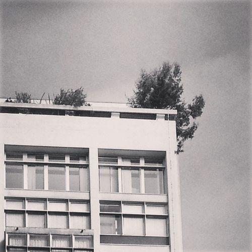 Goldfinger Architecture Brutalist Brutalistarchitecture brutaliststyle brutalistmovement
