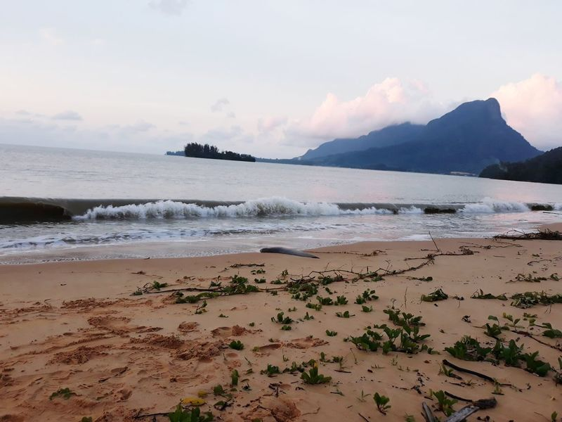 Beach Landscape Sand Sea Cloud - Sky Water Travel Destinations Vacations Beauty In Nature Waves Rolling In Waves Waves In The Sand Kuching, Sarawak Kuchingmalaysia Traveling The World Thecove Pasirpanjangbeach Santubongmaountain Dramatic Sky Tranquility Sunset Tourism Nature Sky Scenics
