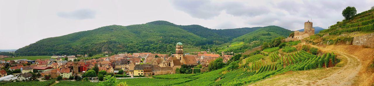Scenic Town Village Alsace Traveling France Tourist Site Picturesque Nature Landscape Vine vineyard Destination Route romantic Travel Destinations Mountain Outdoors