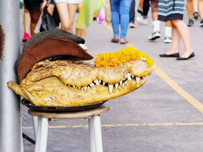 Crocodile head on street life with foots people background Low Section Human Leg Outdoors Human Body Part People Standing Close-up Adult Adults Only Animal Head Of Animal Crocodile Hat Street Art Teeths Fearless Reptile Flower Street Life EyeEmNewHere