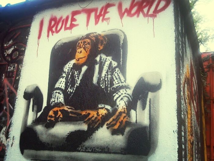 on top of the world... hmmm House Of Chaos Graffiti Art The Message