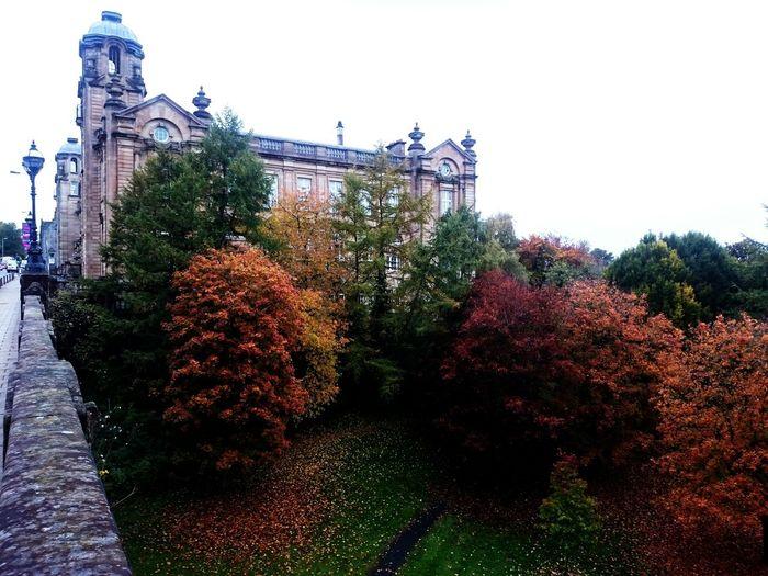 Autumn🍁🍁🍁 Autumn Colors EyeEm Nature Lover Eye Em Scotland Colors Of Autumn