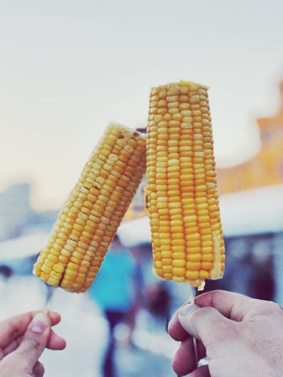 Human Hand Hand Human Body Part Holding Sweet Food Food And Drink Sweet Ice Cream Cone Real People Frozen Food Frozen Cone Corn Dairy Product One Person Food Ice Cream Unrecognizable Person Dessert Indulgence The Foodie - 2019 EyeEm Awards