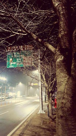 강화도 Night South Korea 길 표지판 밤길 Walk Earth Tree Samsung Galaxy S6 Road