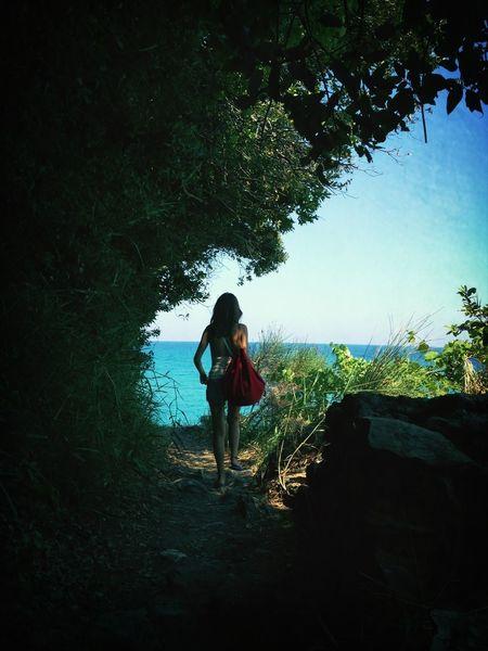 Seeking Blue On Vacation