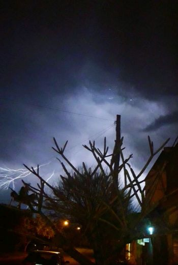 Tormenta 🌩 RAYOS Truenos Tree City Multi Colored Palm Tree Illuminated Silhouette Sky Cloud - Sky Galaxy Moon Dramatic Sky Moon Surface Constellation