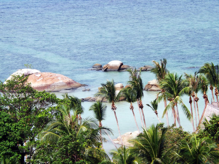 Beauty In Nature Nature Non-urban Scene Ocean Scenics Sea Tranquil Scene Tranquility Water Landscape_Collection Landscape Landscape_photography Travel Destinations Thailand Koh Phangan