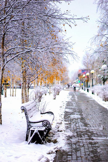 Первый снег ❄ Tree Cold Temperature City Snow Winter Outdoors City Life Nature Building Exterior People One Person Beauty In Nature Adult Day Cityscape Architecture Extreme Weather Snowing First Eyeem Photo