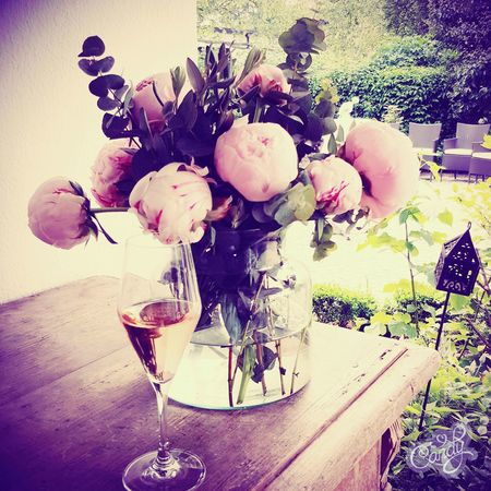 Peonia Pfingsrose Sekt Champagner Henkel Rose🌹 Wedding Day