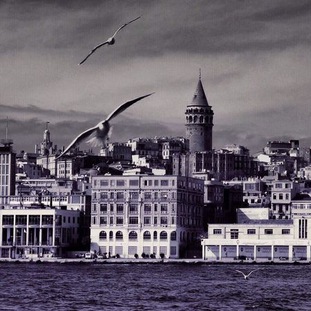 Istanbul Fotografistanbul EyeEm Best Shots Turkey