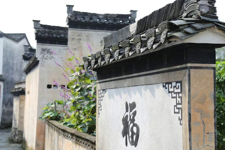 Anhui,China Old Buildings The Purist (no Edit, No Filter) My Unique Style Old Town Flower Autumn Colors Wall