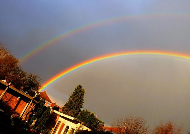 Chaddesden Derby Rainbow Two for the price of one