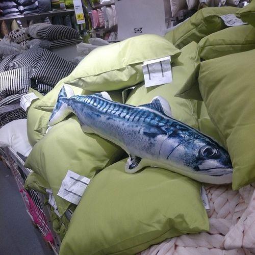 Kolla visste inte att fanns torskar på Ikea IKEA Like Torsk
