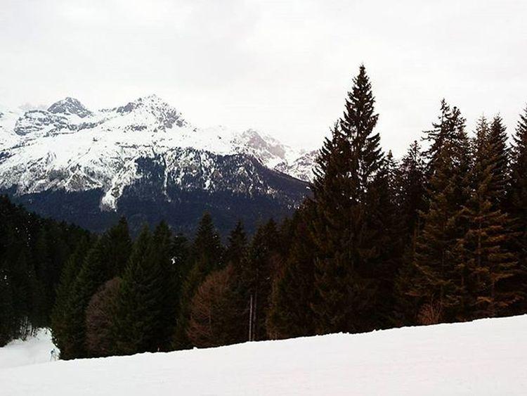 PAGANELLA SKI Paganella Andalo Ski Mountains Snow Freestyle
