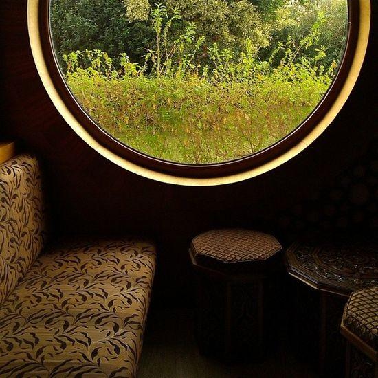 Bir Pencereden Içimiz Gecmis bir şekilde seyrediyoruz dünyayı çiçek naturel windows türkiye hergunumfotograf turkey