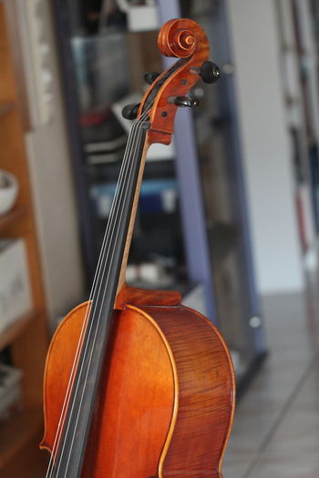 Musical Instrument Music String Instrument Violin Arts Culture And Entertainment Musical Equipment Focus On Foreground String Wood - Material Musical Instrument String Indoors  Close-up No People Cello Bow - Musical Equipment Brown Still Life Day Double Bass Classical Music