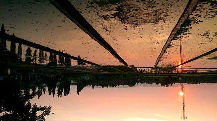 Tadi sore. Itu saja. SORE Sunset Sawah Sedayu Sleman Yogya Jogja