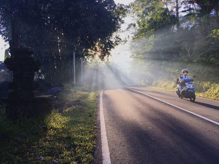 Road Sunlight The Street Photographer - 2018 EyeEm Awards Mode Of Transportation Riding