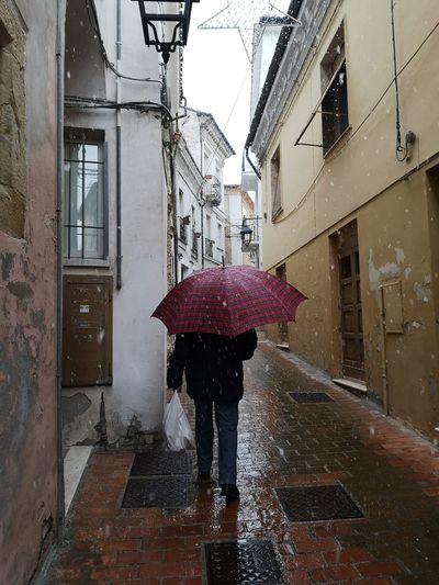 Rear view of woman on wet street during rainy season