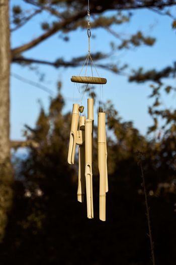 Low angle view of bell hanging on tree against sky