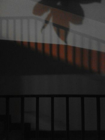 Light And Shadow Blackandwhite Nightphotography