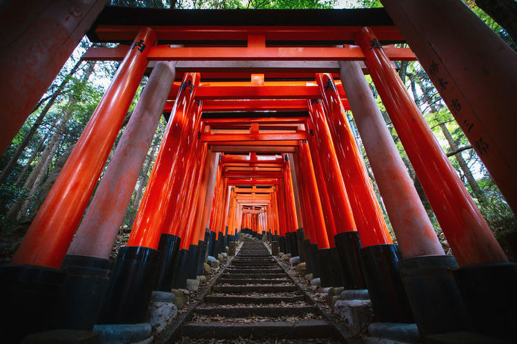 Architecture Built Structure Religion Place Of Worship Spirituality Red Belief In A Row The Way Forward Travel Destinations No People Shrine Diminishing Perspective Architectural Column Staircase