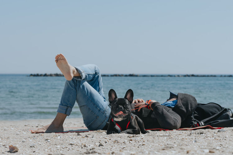 Full length of man relaxing by french bulldog at beach