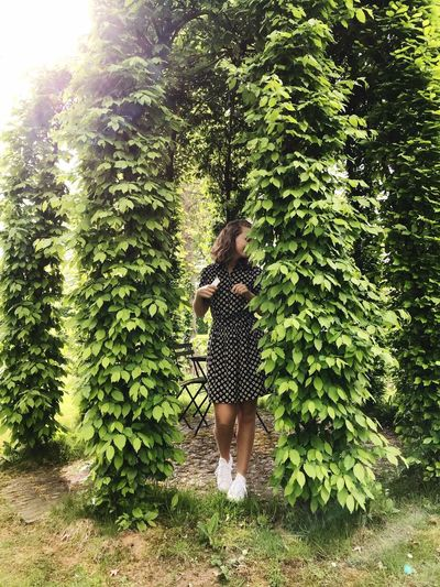 Plant Tree Real