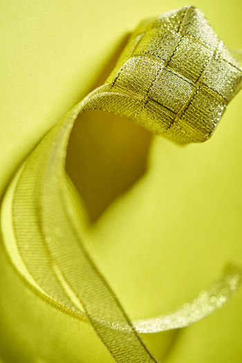 Macro shot of yellow leaf