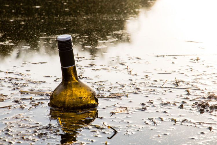 Abandoned bottle in swamp