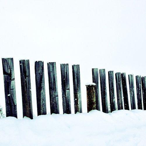 #schnee #snow #pfosten #geländer #poles #posts #railing