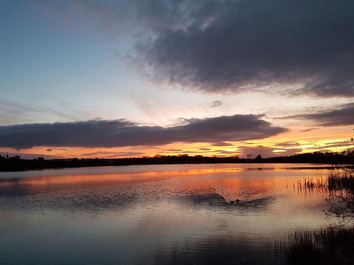 Ireland Cork Sunset Sky Skyporn Nature Lake Birds Castlemartyr