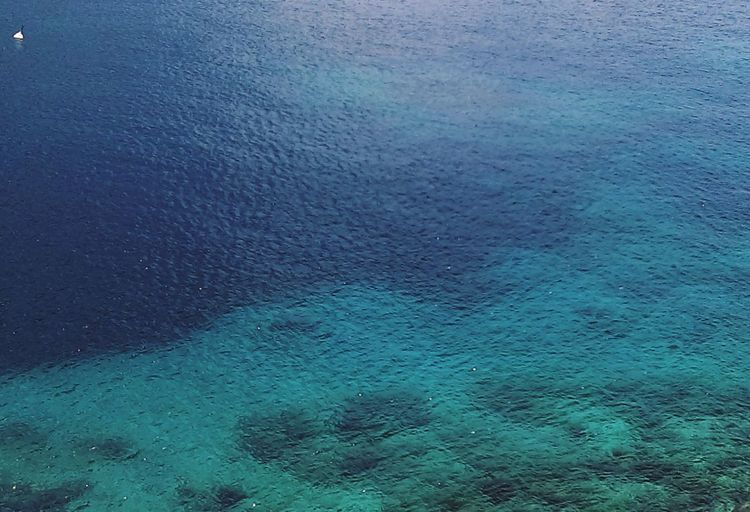 Islandlife Guadeloupe Tropical Island Tropical Climate Tropical Paradise Tropical LesSaintes