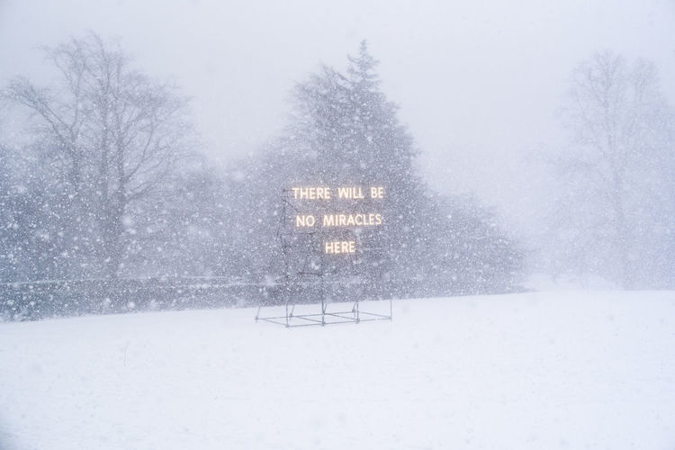 Illuminated signboard against bare trees during snowfall