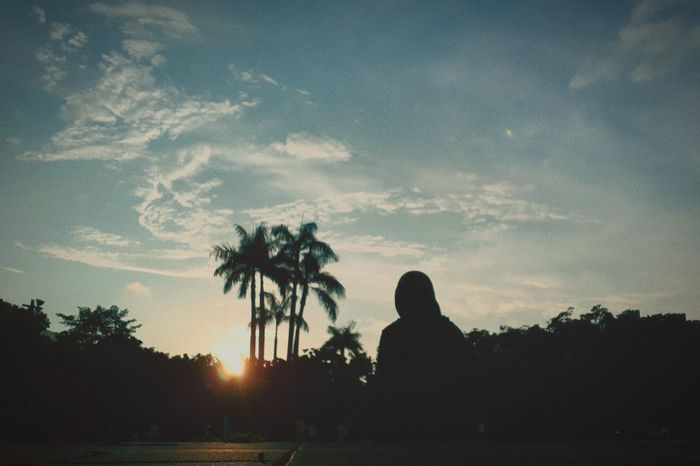 Sitting Outdoors adventures in the city Tree Palm Tree Sunset Silhouette Dusk Sky Calm