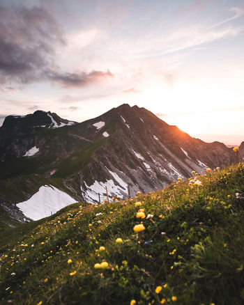 Sunset_collection Beauty In Nature Cloud - Sky Environment Field Gantrisch Growth Idyllic Land Landscape Mountain Mountain Range Nature No People Non-urban Scene Outdoors Plant Remote Scenics - Nature Sky Sunset Switzerland Thewanderco Tranquil Scene Tranquility