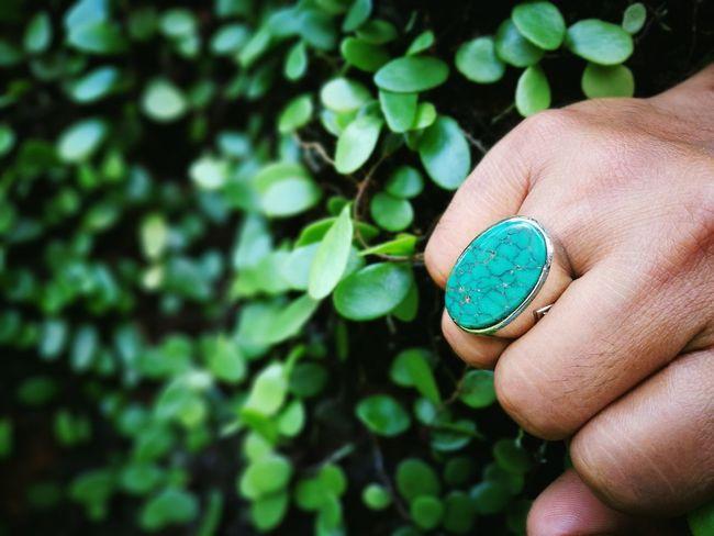 Human Hand Leaf Green Color Close-up Plant Nature Exotic Ring Akik Gem Gemstones