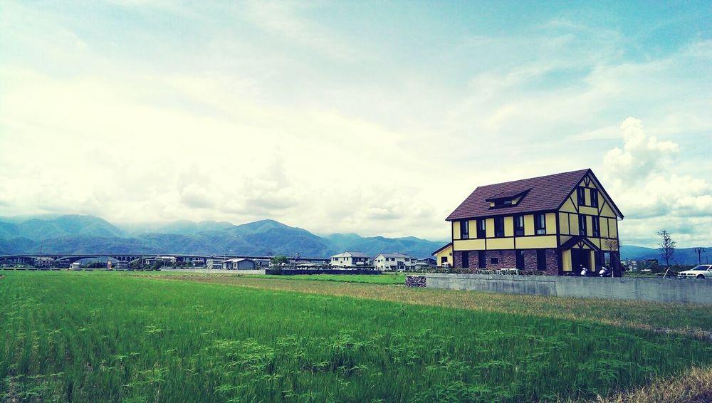 Farmland Yilan Trip Field