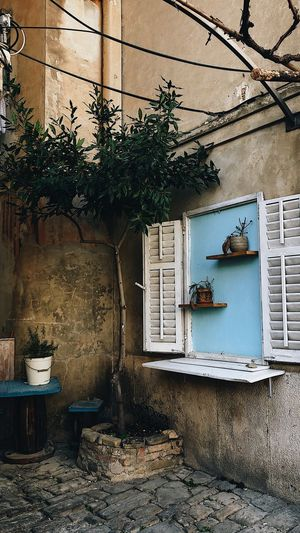 piran, slovenia Mediterranean House Mediterranean Landscape Cityscape Mediterranean  Piran Slovenia 2017 Slovenia Piran Built Structure Building Exterior Architecture Building Window Plant Day No People Tree Residential District House Nature Outdoors Wall Abandoned Wall - Building Feature Growth Entrance Damaged