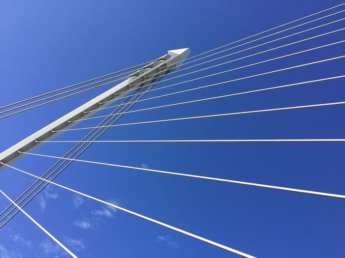 Blue Sky Low Angle View Outdoors Clear Sky No People Bridge Cables Angles Lines Abstract