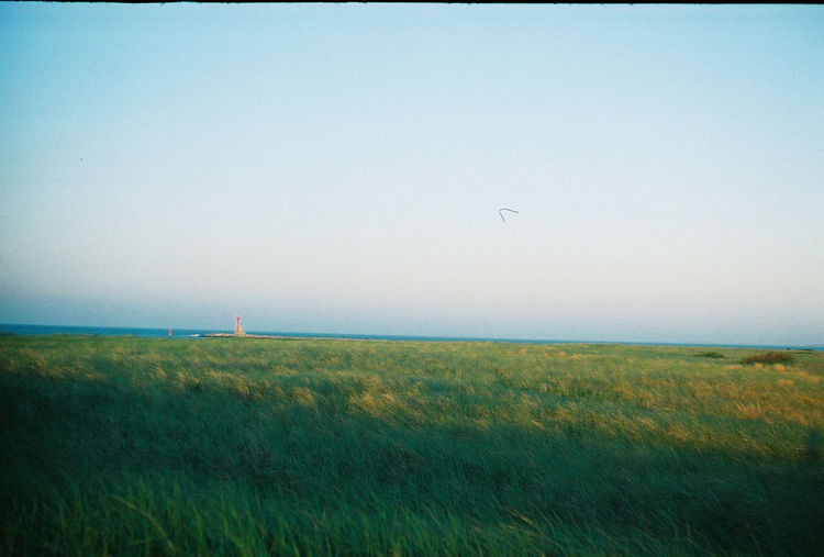 Looking out over the dunes at dusk on Cape Cod, Massachusetts. Captured with a Leica ii on 35mm Fujifilm. Beauty In Nature Blue Cape Cod Day Field Grass Grassy Horizon Over Water Idyllic Landscape Massachusetts Nature New England  No People Non-urban Scene Outdoors Plant Remote Scenics Sea Sky Summer Tranquil Scene Tranquility Water