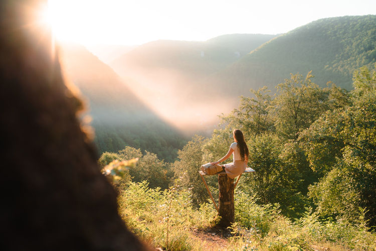 Rear view of woman sitting on wood looking at forest and mountains