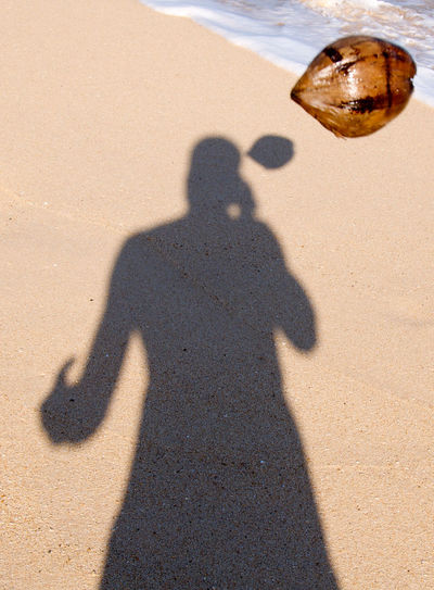 Beach Coconut Sand Self Portrait Shadow