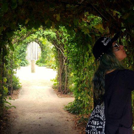 Garden Paths Vancouver Washington