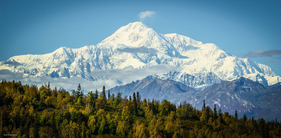 Beauty In Nature Cold Temperature Idyllic Landscape Majestic Mountain Mountain Peak Mountain Range Mt McKinley Nature Non-urban Scene Scenics Season  Sky Snow Snowcapped Mountain Tranquil Scene Tranquility Tree Weather Winter