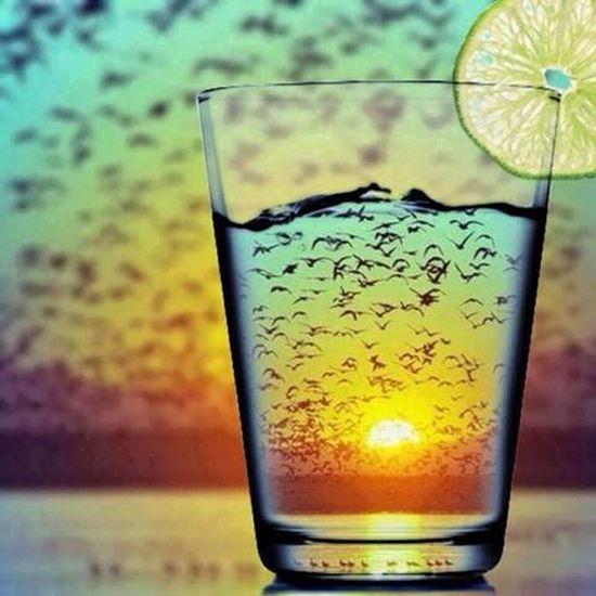 Life Is A Beach Beaming Sun W. Cold Weather follow me I fallow back Cuba. Lemonade