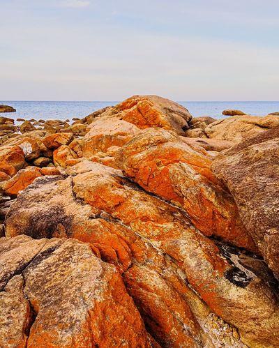 Orange Lichen Covered Coastal Rock Rock Coastal Rock Australia & Travel Coast Line  Australia Bunker Bay Rock Formation Western Australia Orange Lichen Orange Lichen Orange Rock Nature Coastal Secluded Beach