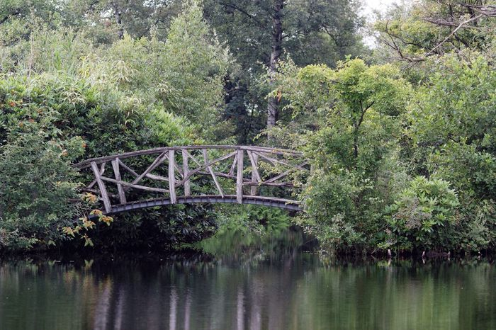 Bridging The Gap Meet You There Waterside Garden Of Lust In The Field Contemplating Time To Reflect Touch Of A Woman