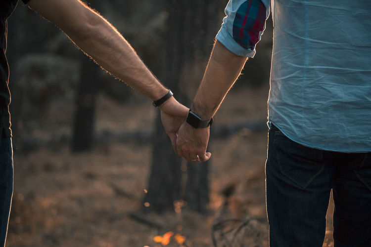 Midsection of gay men holding hands while standing in forest at sunset