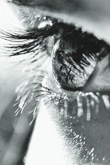 Porque a todos nos ha tocado algo de arcoiris y a mí me ha tocado un cristal pardo. Reflection Eyeemphotography Eyem Best Shots Eyes Brown Eye Medellin City Canon Sx50 Photography Canon_official Abstract Photography Black And White Photography Young Adult Human Face Lifestyles Natural Simplicity
